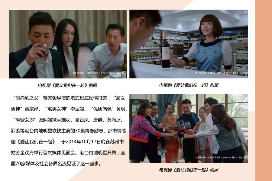 四川卫视爱在一起_30集电视连续剧《爱让我们在一起》媒体见面会圆满落幕